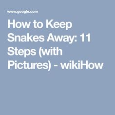 f0ab6301b68b How to Keep Snakes Away  11 Steps (with Pictures) - wikiHow