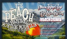 A great finale to the 2013 summer of mini vacations:  The Peach Music Festival