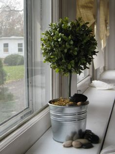 Your place to buy and sell all things handmade Boxwood Topiary, Topiaries, Terrarium Ideas, Artificial Boxwood, Outdoor Ideas, Sunroom, Potted Plants, Centerpieces, Room Ideas