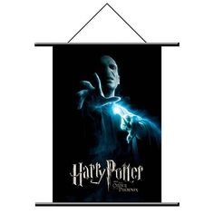 Harry Potter Voldemort Wall Scroll