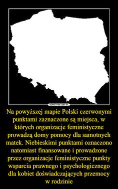 Na powyższej mapie Polski czerwonymi punktami zaznaczone są miejsca, w których organizacje feministyczne prowadzą domy pomocy dla samotnych matek. Niebieskimi punktami oznaczono natomiast finansowane i prowadzone przez organizacje feministyczne punkty wsparcia prawnego i psychologicznego dla kobiet doświadczających przemocy w rodzinie –