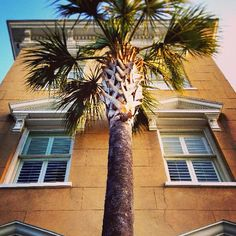 A postcard from #Charleston: Look up! Exquisite details abound throughout the historic district.