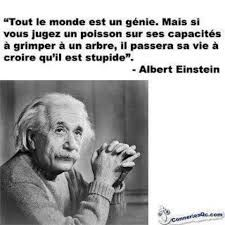 """Citations D'Albert Einstein Description Citation de Einstein: """"Everybody is a genius. But if you judge a fish by its ability to climb a tree, it will Blabla, Tree Quotes, French Quotes, Albert Einstein, Citation Einstein, Einstein Quotes, Positive Attitude, Beautiful Words, Words Quotes"""
