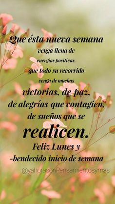 Morning Love Quotes, Good Morning Messages, Spanish Greetings, Happy Week, Daily Inspiration Quotes, Mornings, Positive Quotes, Believe, Inspirational Quotes