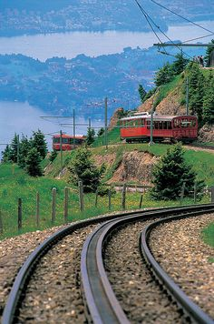 "Mt. Rigi ""Queen of the Swiss Mountains"" in Summer by Viator.com"