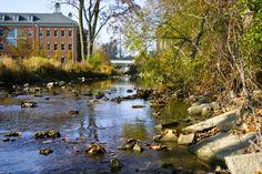 10 Mile Sylvania, Ohio - I used to go blue boating down this creek all the time. Sylvania Ohio, Toledo Ohio, Go Blue, Altars, Greatest Adventure, Great Lakes, Neverland, Boating, North West