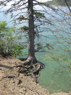 Hanging in there, Sleeping Giant Provincial Park, Ontario bucket list!