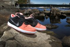"Premier x Nike SB ""Fish Ladder"" Collection http://hypebeast.com/hb1nvr5"