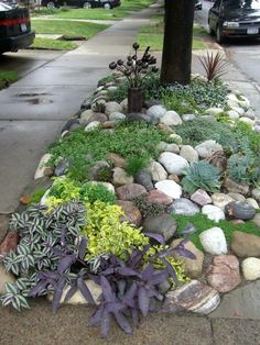 Creative planting strip - Areas between a sidewalk and street can be a challenge, but it just takes a little creative imagination to create a great looking area. Mailbox Garden, Mailbox Landscaping, Sidewalk Landscaping, No Grass Landscaping, No Grass Yard, No Mow Grass, No Grass Backyard, Small Front Yard Landscaping, Modern Landscaping