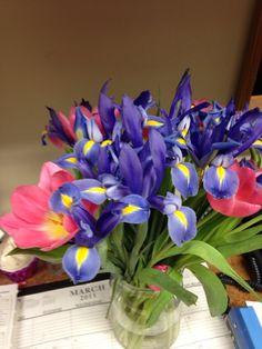 Pretty purple & yellow flowers a coworker got Purple Yellow, Yellow Flowers, Glass Vase, Girly, Pretty, Plants, Beautiful, Jewelry, Decor