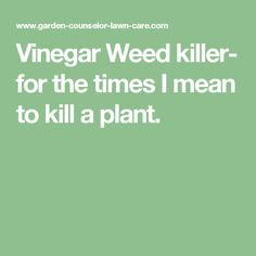 Vinegar Weed killer- for the times I mean to kill a plant.