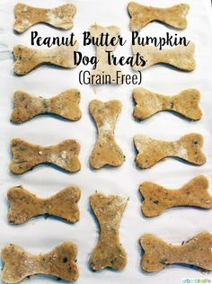 Homemade Dog Food Peanut Butter Pumpkin Grain Free Dog Treats - These homemade grain-free dog treats are so easy to make and only take a few ingredients! Your special puppy/dog will love these! Dog Cookie Recipes, Homemade Dog Cookies, Dog Biscuit Recipes, Homemade Dog Food, Dog Treat Recipes, Dog Food Recipes, Dog Treats Grain Free, Grain Free Dog Food, Diy Dog Treats