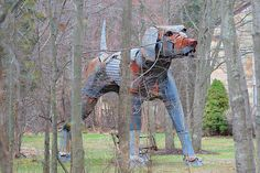 Big dog near Locktown, New Jersey