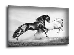 RUNNING HORSES Running Horses, Moose Art, Animals, Animales, Animaux, Animal Memes, Animal, Animais, Dieren