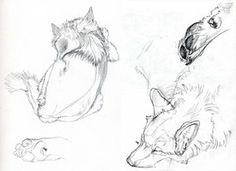 Kerby Studies by Novawuff