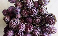 artichoke - tones of blues/ lavender and violet Deco Champetre, Spring Blooms, Fruit And Veg, Purple Rain, Shades Of Purple, Purple Hues, Violet, Mauve, Still Life