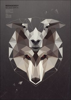 wolf in sheep skin  thumb 30 Brilliant Examples of Geometric Designs