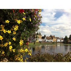 THIS is where i grew up!!!! Godmanchester, England.