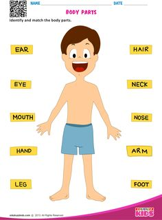 Preschool science body parts with printable. Helpful for kids to identify the parts of body. Kids will be able to identify and match the body parts on each worksheet. worksheets BODY PARTS English Activities For Kids, Learning English For Kids, English Worksheets For Kids, English Lessons For Kids, Preschool Learning Activities, Preschool Science, Kid Science, Science Quotes, Listening Activities