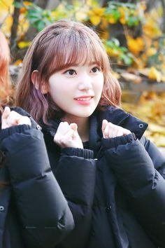 Nayeon Bias Wrecker Yuri, Korean Best Friends, Sakura Miyawaki, Gfriend Sowon, Honda, Best Kpop, Japanese Girl Group, Survival, Kim Min