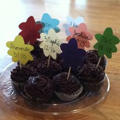 Mini cupcakes with flowers on toothpicks. Each flower stands for a yw value and has a corresponding scripture verse on it! Birthday present to incoming laurel!