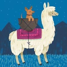 Content llama (with dog sidekick) Alpacas, Llama Arts, Llama Llama, Cartoon Llama, Alpaca Drawing, Illustrator, Spirit Animal, Rock Art, Cute Art