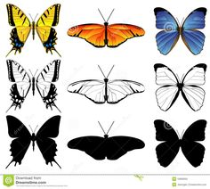 http://www.dreamstime.com/stock-photo-butterfly-set-image10669050