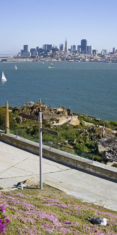 The city from Alcatraz