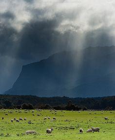 Te Anau Downs, Southland, New Zealand