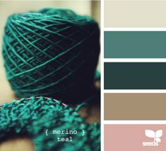Teal -inspiration for my cousin's wedding