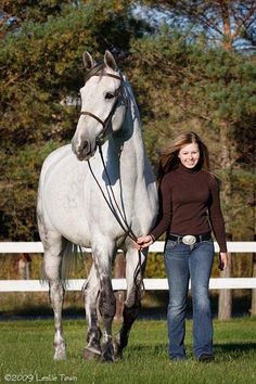 Dutch Warmblood horse My favorite horses are Warmbloods :)