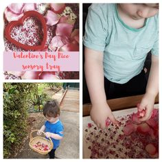 Valentine's Day Rice sensory tub using lavender and pink rice with rose petals