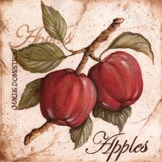 fruit from the branch i - Kate Mcrostie Vintage Cards, Vintage Images, Vintage Posters, Apple Picture, Illustration Botanique, Apple Decorations, Apple Art, Tea Art, Decoupage Paper