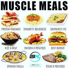 MUSCLE MEALS by @smurray_32 - Which is your favourite bulking meal?  As you seem to like the previous bulking meal post here are another 8 juicy meal examples that are often very calorie dense thus aiding those with poverty appetites and/or large maintenance requirements to create a calorie surplus. However for this post I want to discuss ONE specific study.  You will have likely heard me explain before that when bulking large surpluses & trying to force feed muscle growth only results in…