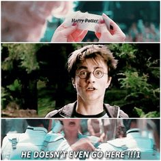Lol haha funny pics / pictures / Harry Potter Humor / Hunger Games Humor / Katniss / Effie / FANDOMS UNITE!!