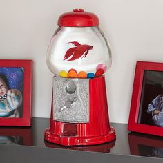 Gumball machine fish tank, is the perfect fish tank to have for a table top. Simple and clean. but has that great look and feel of vintage. Aquariums, Aquarium Original, Bonbons Vintage, Birthday Gag Gifts, Farm Plans, Deco Originale, Gumball Machine, Cool Inventions, Betta Fish