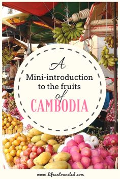 A mini-introduction to the fruits of Cambodia - from colorful to bland. Which one is your favorite?