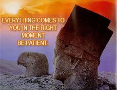 Everything comes to you in the right moment Be Patient. www.simpelaandelenkopen.nl