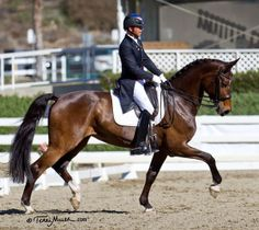 Steffen Peters with Rosamunde in her debut competition wins the Prix St. Georges at the California Dressage Society San Diego mid-winter show