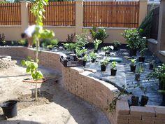 Kertépítés -- hogyan álljunk neki? | Kert-Ötlet 3D Outdoor Decor, Plants, Home Decor, Decoration Home, Room Decor, Plant, Home Interior Design, Planets, Home Decoration