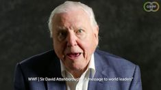 A new video documenting Sir David Attenborough's inaccurate claims about climate change and Arctic wildlife blames his apocalyptic language and misleading na. David Attenborough, About Climate Change, World Leaders, Global Warming, Betrayal, Young People, Arctic, Einstein, Anxiety