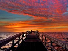 Safety Harbor, FL in winter. (c) ToniDee Colon.