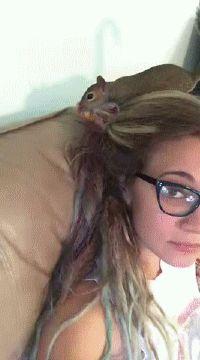 Squirrel Buries Cheetos In Girls Hair