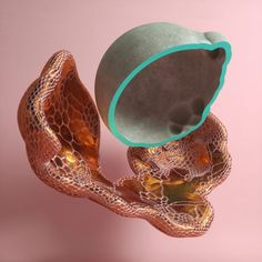 Dual Graph plugin download: Manuel [Entagma] ported his Houdini voronoi remesher to a c4d plugin.