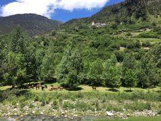 Val d'Aran #naturelovers #pirineos #vernedacampingmountainresort