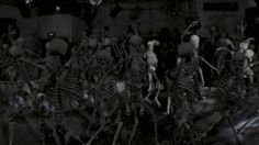 They dance hard. | 16 Reasons Those Day Of The Dead Skeletons Have The Best Lives