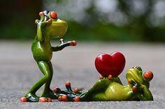 Rãs, Amor, Fones De Ouvido, Música