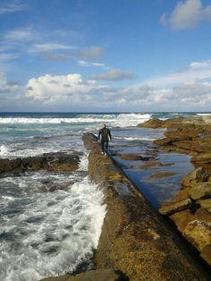 local surfer down at cronulla
