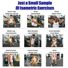 1000+ images about health / body system and exercises on Pinterest ...