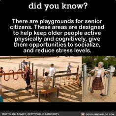 Playground for senior citizens